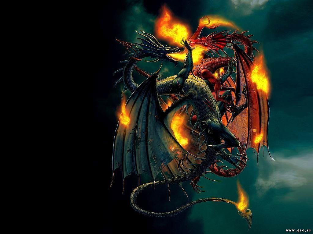 deux dragons qui se batte
